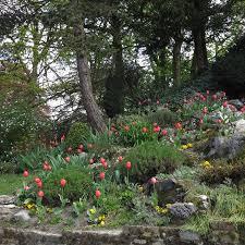 <b>весенние цветы</b> повсюду в парке - Picture of Citadel Park, Ghent ...