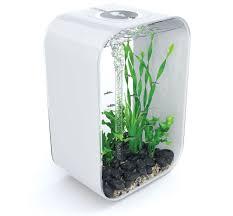biorb life portrait 45 litre aquarium in white office desk aquarium