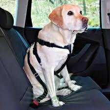 <b>Ремень безопасности</b> для собак в автомобиль – купить по ...