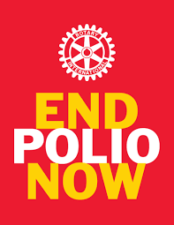 Image result for End Polio graphics