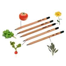 Buy pencil plant and get free shipping on AliExpress