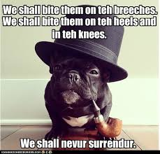 Funny French Bulldog Memes via Relatably.com