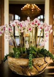 day orchid decor: orchid decor photo by beautiful day images wedding decor orchid