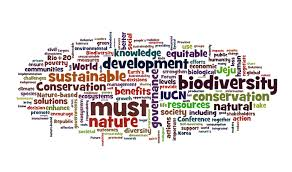 unacademy for upsc upsc preparation conservation of biodiversity the actions which are necessary to conserve biodiversity includes the restoration protection conservation and enhancement of variety of life in an area so