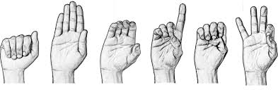 Image result for sign language