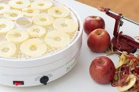 The Best <b>Food Dehydrator for</b> 2020   Reviews by Wirecutter