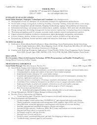 resume examples resume career summary examples resume career example of professional summary for resume