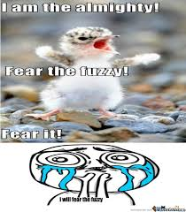 Fear The Fuzzy by tyrico121 - Meme Center via Relatably.com