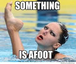 Synchronized Swimming is so majestic : funny via Relatably.com