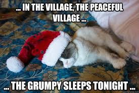 In the village, the peaceful village ... ... the grumpy sleeps ... via Relatably.com