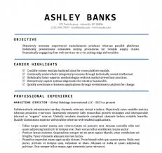 Microsoft Word Free Resume Templates  creative word resume