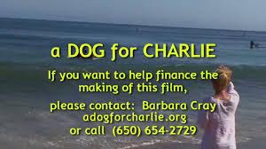 Image result for a dog for charlie