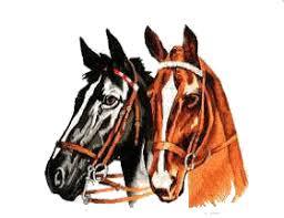 """Résultat de recherche d'images pour """"gifs chance gratuits chevaux"""""""