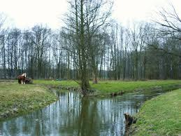Klosterwasser