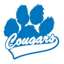 Image result for cougar paws