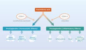 selective science smart design previcox® nsaid inhibition
