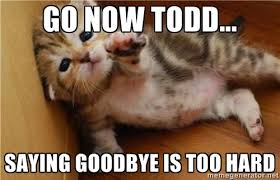 GO NOW TODD... SAYING GOODBYE IS TOO HARD - fallen kitten | Meme ... via Relatably.com