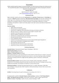 camp director resume sample program director resume samples