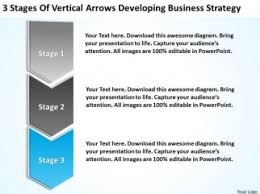 Business Development Strategy Template  sample leadership plan