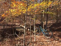 <b>Skull</b> Buster <b>Mountain Bike</b> Trail, Georgetown, Kentucky