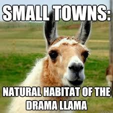 Small towns: Natural habitat of the Drama Llama - Drama Llama ... via Relatably.com