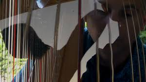stephen taylor cinemaelectronica manno harp etc still002