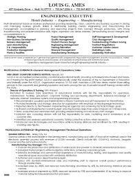 sample resume for director of operations