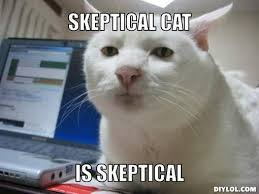 Serious Cat Meme Generator - DIY LOL via Relatably.com