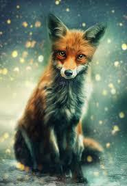 <b>Mr</b>. <b>Fox</b> by Phatpuppyart-Studios on DeviantArt | <b>Watercolor</b> fox, Fox ...