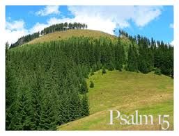 Image result for Psalm 15