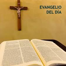 Evangelio del día - P. Pedro Brassesco