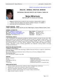 resume templates game developer sample programmer cv 85 inspiring example of a professional resume templates