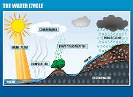 clean water clear choice   kids   educational diagramseducational diagrams
