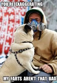 Funny Pug Dog Meme Pun LOL   FUNNY PUG DOG MEMES CAPTIONS LOL ... via Relatably.com