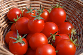 Image result for tomato