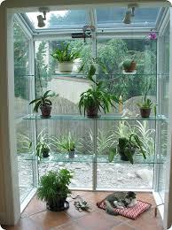 kitchen window ideas garden