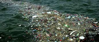 Resultado de imagen de El deterioro del Medio Ambiente