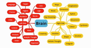 creative stidies mind map essay on ldquo brainrdquo