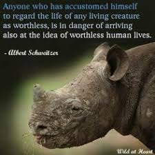 Animal Quotes By Famous People. QuotesGram