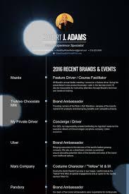 Facilitator Resume  dandrea account