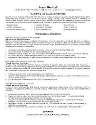 Example Marketing and Sales Coordinator Resume   Free Sample