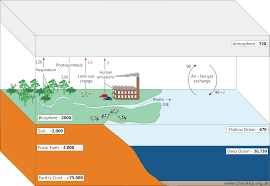 the carbon cycle climatica