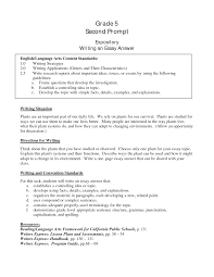 example of an essay paper english paper writing