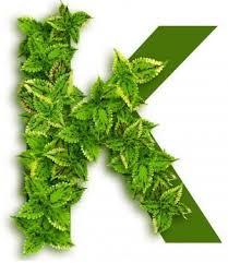 Витамин K2 (МК-7) улучшает эластичность артерий и, вероятно ...