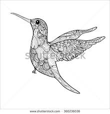 Small Picture Coloring Book Pages Hummingbird Small Bird Stock Vector 360236036