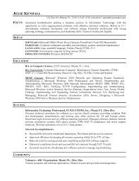 IT Professional Resume Template   format of a professional resume happytom co