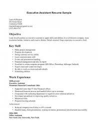 Waitress Resume happytom co Sample Server Resume Examples   server resume examples
