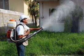 Resultado de imagen para imagenes de fumigaciones