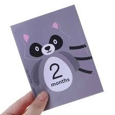 20 Pcs/<b>Set</b> Month Card <b>Baby</b> Photography Photo Cards Monthly ...
