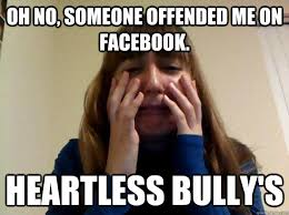 oh no, someone offended me on facebook. heartless bully's - Crying ... via Relatably.com